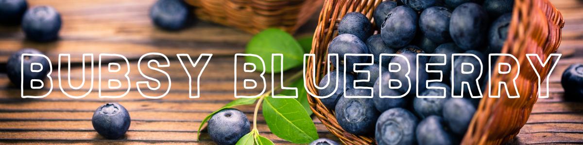 cbd-e-liquid-blaubeeren-blueberry-hochdosiert-2000-1000-600-300-mg.png